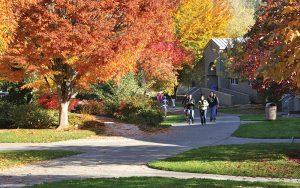 RCC's Redwood campus arboretum in the fall