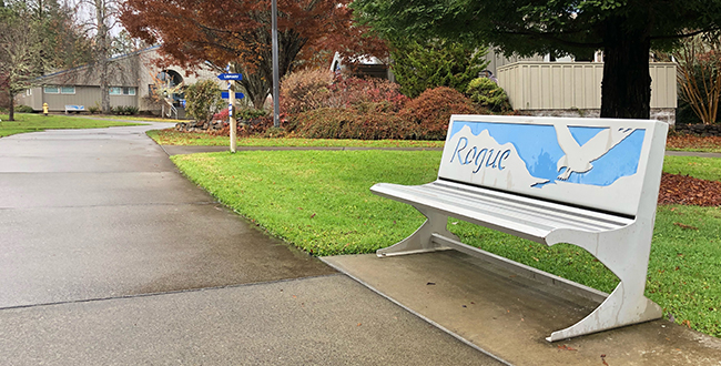 Osprey benches designed by Phil Nelson are dotted throughout the pathways of Redwood Campus.